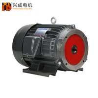 YT Series of Vane Pump Motor